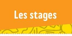 Stage enfants : Artisanat - Informatique - Cirque